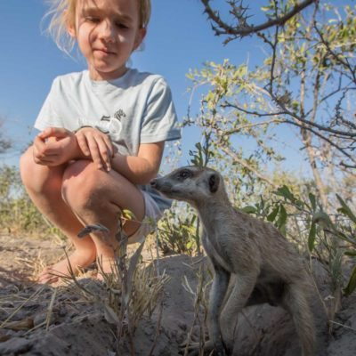 meerkat + kid 2