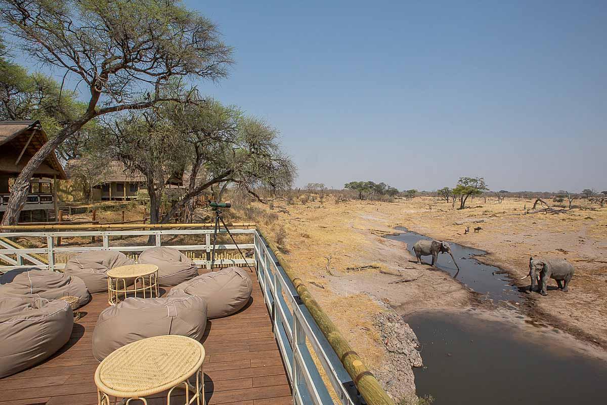 Ghoha Hills Savuti Safari Lodge Khaki Amp Dust
