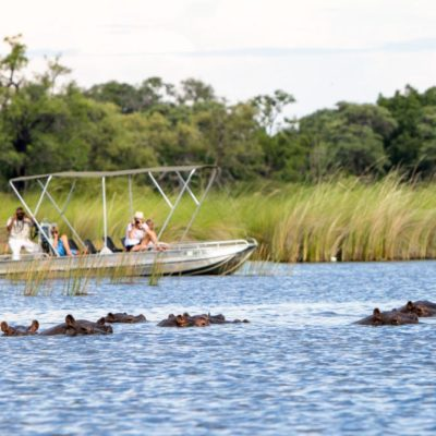 Camp-Moremi-Boat-Safari(2)