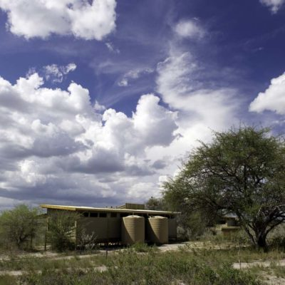 Kalahari_Plains-26