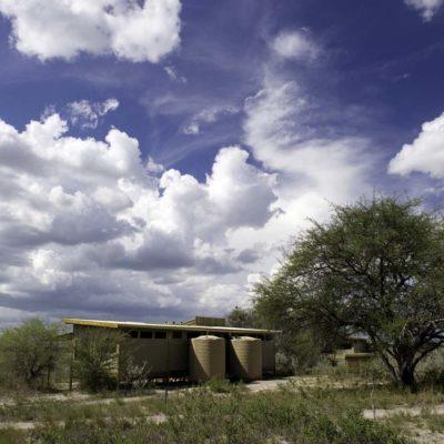 Kalahari_Plains-26