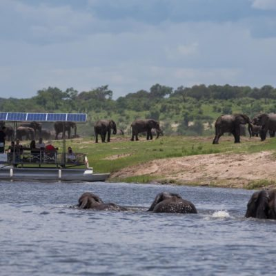 Boating chobe