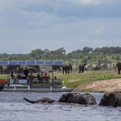 boating Chobe
