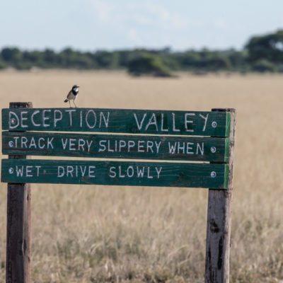 deception valley low