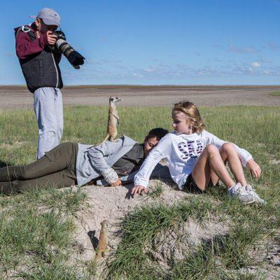 meerkat activity2