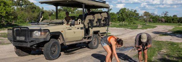 new LC on safari
