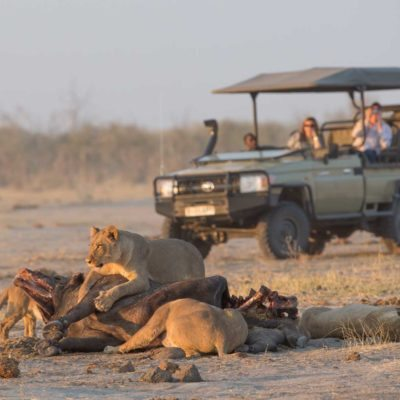 savuti game drive 2