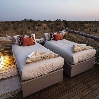 skybed beds
