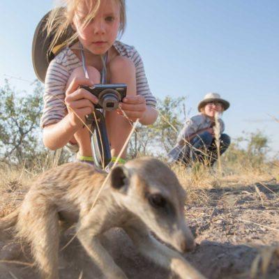 meerkat + kid 3-3