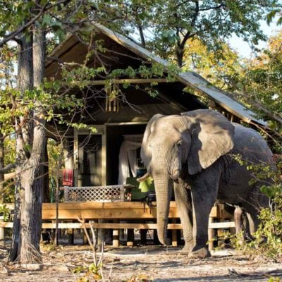 2Hyena Pan - Accommodation - Bedroom & ellies outside