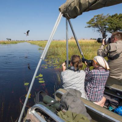 birding in the delta